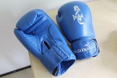 Myydään: Boxing Gloves