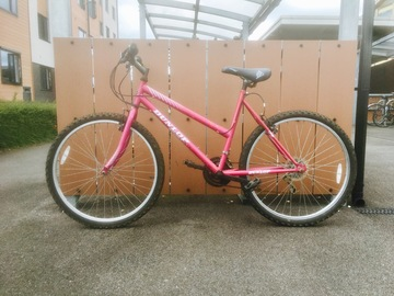 Renting out: Pink Dunlop