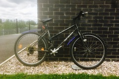 Renting out: Grey City Trail Breaker