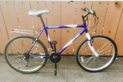 Renting out: Purple Velocity Bike