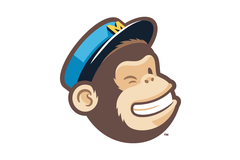 Training Skills: MailChimp Training (Registered Expert)