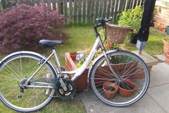 Renting out: Comfortable Etienne Ladies Bike with basket