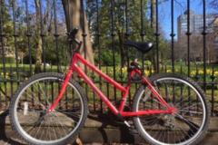 Renting out: Humanitarian bike at Grassmarket Cafe (Edinburgh)