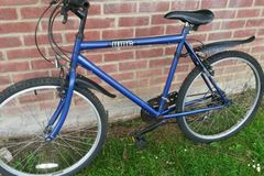 Renting out: Very nice, serviced male bike