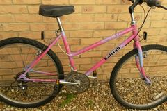Renting out: Recently serviced Female Raleigh bike