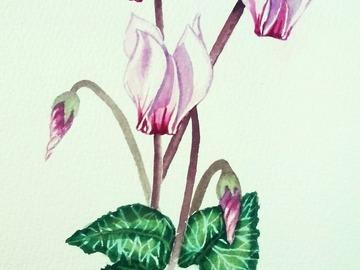 """Vente au détail: Aquarelle """"les cyclamens roses clairs"""""""