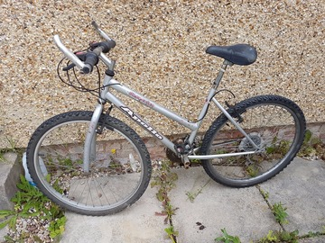 Renting out: Female Apollo Bike in nice condition