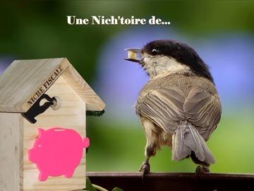 Sale retail: Nichoirs humouristiques en bois
