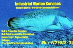 Offering: Diver/Hull Cleaning/Propeller Removal & Replacement