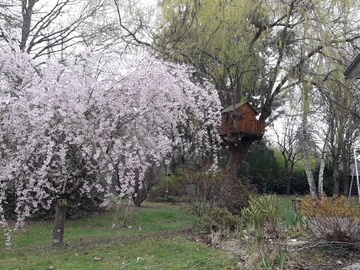 NOS JARDINS A LOUER: 1.3 hectare cadre bucolique