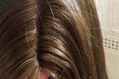 Venta: Peluca de pelo natural con efecto cuero cabelludo(Nueva)