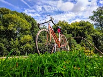 Renting out: Copper Marlboro Vintage Road Bike