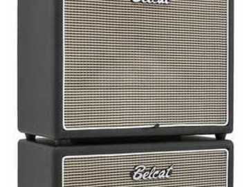 Renting out: AllTube Head Mini Stack with 2 x Celestion Cabinets