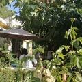 NOS JARDINS A LOUER: Jardin terrasse aix cuisine/sdb exterieur parking rue