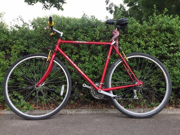 Renting out: Tall Red Raleigh BOOKED