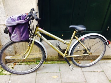 Renting out: Gold Sturdy Shopper