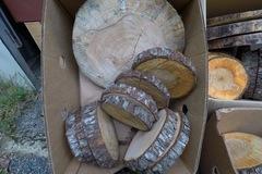 Ilmoitus: Erikokoisia puukiekkoja (18-35cm halkaisijalla)