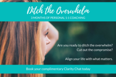 Services: Ditch the Overwhelm - 3 Months Personal Coaching