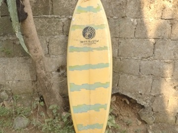 For Rent: Classic Singlefin Shortboard