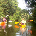 Book Online: Excursion of Sal's Backwaters