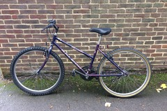 Renting out: Purple Raleigh