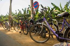 Book Online: Pedal through the Streets of Hampi
