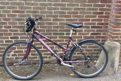 Renting out: Falcon black and purple
