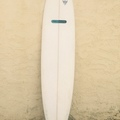 Renting out: 8' Mini Mal - Pro Elite - Gold Coast