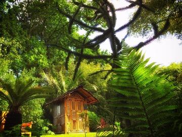 NOS JARDINS A LOUER: Jardin exotique de 2,5 hectares