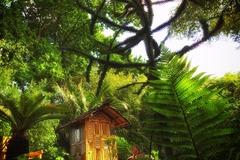 Offres: Jardin exotique de 2,5 hectares