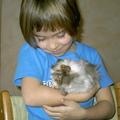 Urlaubsbetreuung: Urlaubsbetreuung Kleintiere bei mir zu Hause (St.Ruprecht)