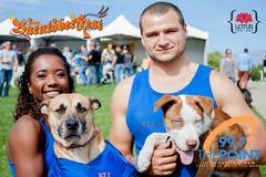 Price Listed : Barktoberfest Booth - A Festival For You and Your Dog