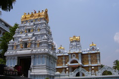 Book Online: Temples of Tirupati - Guided Tour