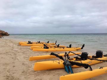 Hourly Rate: HOBIE Island Kayak