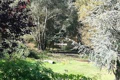 NOS JARDINS A LOUER: Jardin au bord du CHER