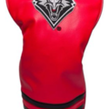 Selling: Team Golf New Mexico Lobos Vintage Driver Headcover