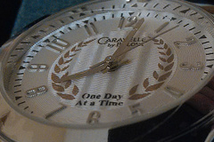 """Bulk Lot: 5 Bulova Uni-Sex """"One Day at a Time"""" Recovery Watches"""
