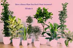 Tarvitaan: Requesting Houseplants