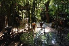 NOS JARDINS A LOUER: Le jardin de Laurence