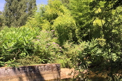 NOS JARDINS A LOUER: Domaine du Moulin