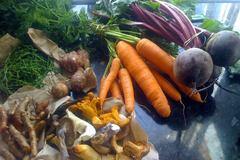 Workshop Buy: MANAGE STRESS THROUGH NUTRITION