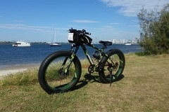 Daily Rate: FAT TYRE MOUNTAIN BIKE