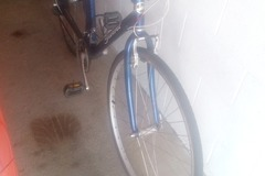 Daily Rate: Used bike