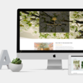 Services: Beautiful Branding & Website Design - CREATIVA Design Studio