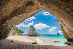 Services: Coromandel Trail Running Retreat