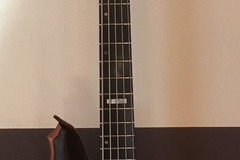 Renting out: ESP LTD F-5E NS