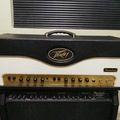 Renting out: Peavey Windsor