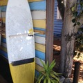 "Daily Rate: 6'6"" Torq Shortboard"