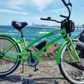 Daily Rate: BEACH CRUISER SINGLE GEAR