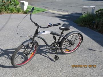 """Daily Rate: Children's 24"""" Bike"""